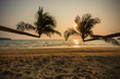 sunset on the beach with coconu trees