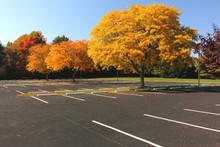Autumn Empty Parking Lot