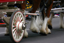 Detail, Clydesdale Horses Pulling Wagon