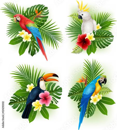 Fototapeta premium Zestaw kolekcja tropikalnych kwiatów i ptaków