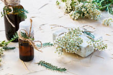 Milfoil Flower, Yarrow Essential Oil In Glass Bottles On A Light Table. Used In Medicine, Cosmetics And Aromatherapy. Fresh Flowers, Green Leaves And A Piece Of Soap.