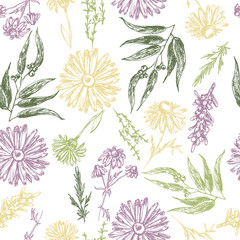 Fototapeta Seamless pattern with plants and flowers