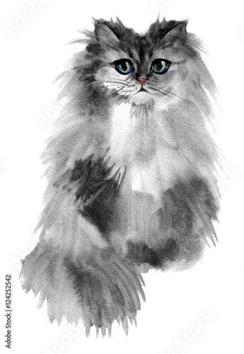 Photo sur Toile Croquis dessinés à la main des animaux Portrait of a gray cute cat with blue colored eyes.