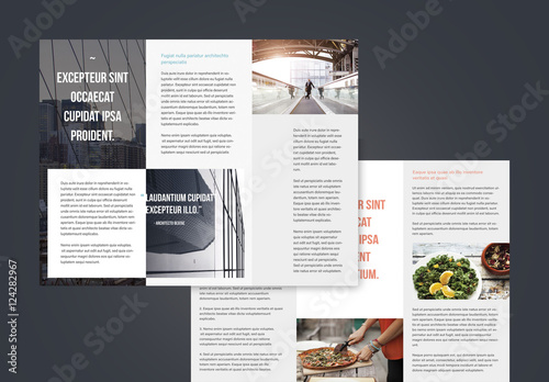 buy brochure templates - professional trifold brochures buy this stock template