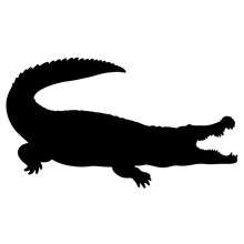 Crocodile Or Caiman. Black Vector Silhouette Of An Alligator