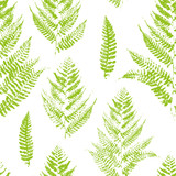 Seamless pattern with paint prints of fern leaves  - 124303186