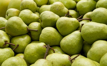 Plenty Of Packham Pears