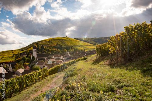 Papiers peints Vignoble Village de Katzenthal dans le vignoble alsacien, Haut Rhin, France