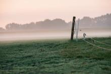 Detail Of Cattle Fence In Foggy Meadow. Geesteren. Gelderland. T