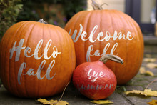 Welcome Fall Pumpkins - In Fro...