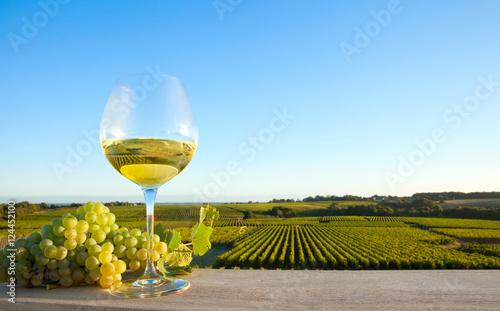 zielone-winogrona-i-biale-wino-w-piekny-dzien