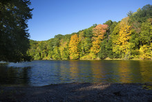 Fall Foliage On The Westfield River, Massachusetts.