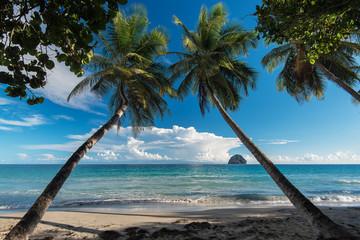 Fototapeta Martinique, la plage du Diamant