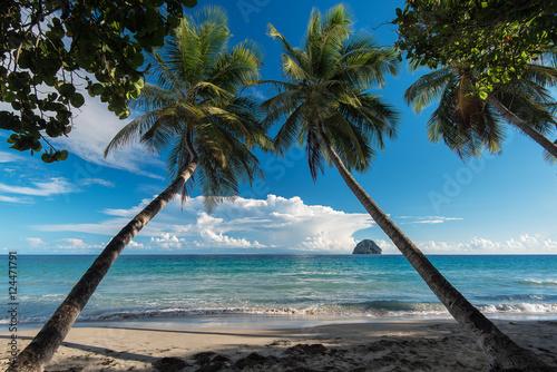 Martinique, la plage du Diamant
