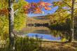 Sugar Maples on Colorful Catskills Lake