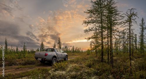 Obraz Car in the forest - fototapety do salonu