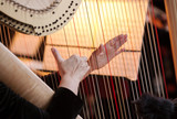 hands of the woman playing a harp. symphonic orchestra. harpist