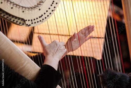 Valokuvatapetti hands of the woman playing a harp. symphonic orchestra. harpist