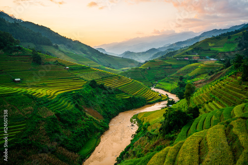 Autocollant pour porte Les champs de riz Terraced rice field in Mu Cang Chai, Vietnam