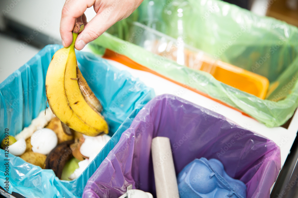 Fototapeta Woman putting banana peel in recycling bio bin in the kitchen. Person in the house kitchen separating waste. Different trash can with colorful garbage bags.