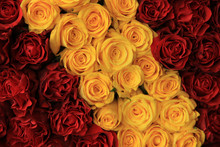 Red And Yellow Roses In A Wedding Arrangement