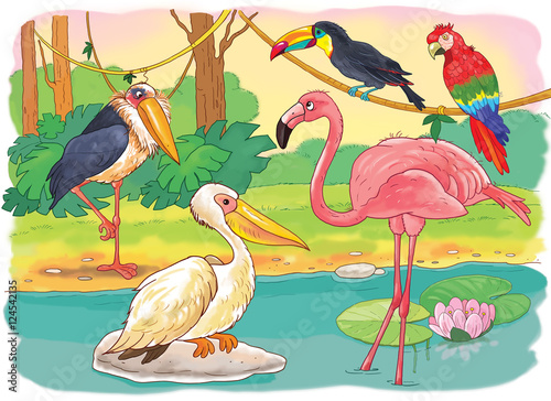 At The Zoo African Animals Small Set Of African Birds Cute