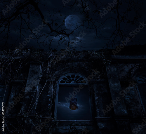 Wall Murals Cemetery Bat sleep and hang on ancient window castle with dead tree over