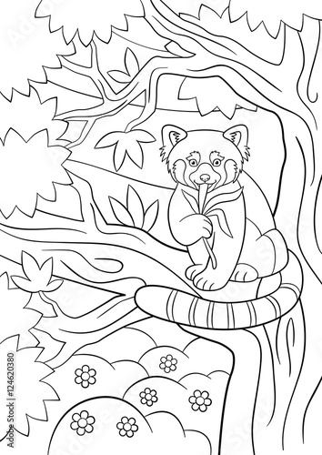 coloring pages little cute red panda eats leaves buy this stock vector and explore similar vectors at adobe stock adobe stock little cute red panda eats leaves