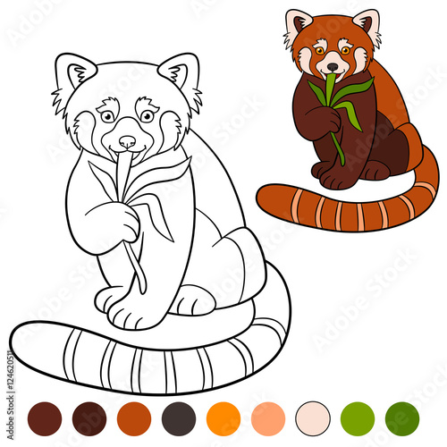 coloring page red panda little cute red panda eat leaves buy this stock vector and explore similar vectors at adobe stock adobe stock red panda eat leaves