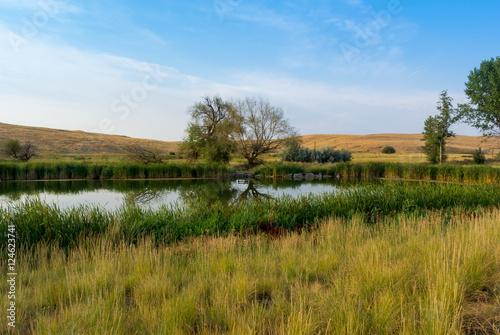 Fotografie, Obraz  Early Morning Pond Landscape