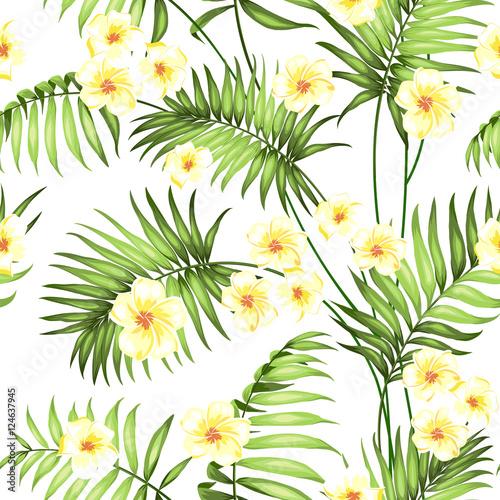 bezszwowy-tropikalny-kwiat-kwiaty-plumeria-i-palmy-dzungli-piekny-tkanina-wzor-z-tropikalnymi-kwiatami-odizolowywajacymi-nad-bialym-tlem-okwitniecie-kwitnie-dla-bezszwowego-deseniowego-tla