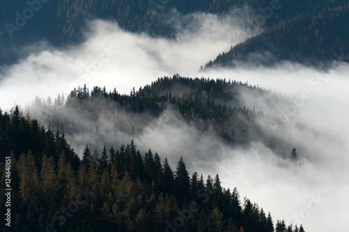 Poster Morning with fog morningFog