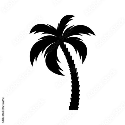 Fotografija Black vector single palm tree icon