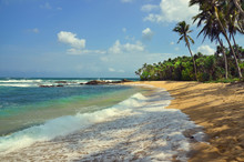 A Beautiful Deserted Sandy Beach With Palm Trees At The Southern Coastline Of Sri Lanka (Tangalle Region)