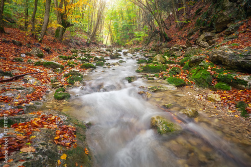 Aluminium Prints Forest river Beautiful autumn landscape with mountain river and colorful trees