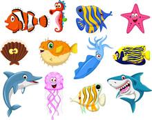 Sea Life Cartoon Set