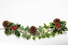 Festive Sprig Of Holly And Ivy...