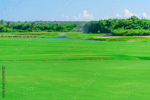 Deurstickers Groene watering the golf course
