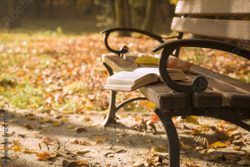 Wall Murals Cemetery The book lying on a park bench