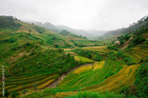 Poster Rijstvelden Rice fields at Northwest Vietnam