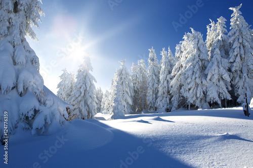 Foto-Doppelrollo - Winterland Schnee (von drubig-photo)