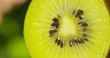 Close up or macro of a slice of kiwi, a drop of water falls in slow motion. The fruit gives off frescazza and is filled with juice rich in vitamins and energy. Concept of fresh fruits, juices and kiwi