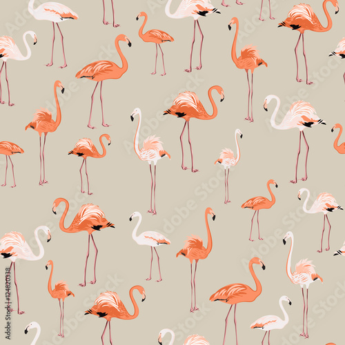 Canvas Prints Flamingo Bird Exotic flamingo birds pattern on beige background