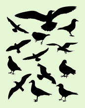 Seagulls, Dove, Pigeon, Crow Silhouette. Good Use For Symbol, Logo, Web Icon, Mascot, Sign, Or Any Design You Want.