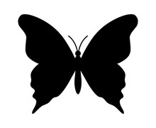 Butterfly Winged Insect Flat I...