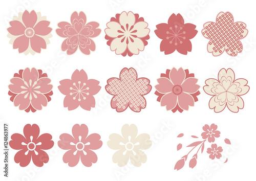 Fotografía  和風 桜パーツ素材 ピンク