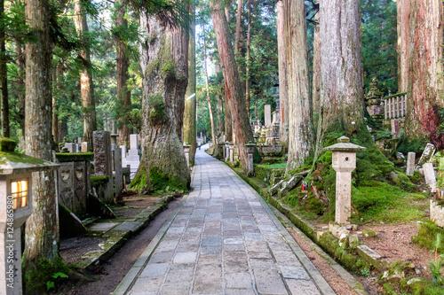 Graveyard of Mount Koya (Koya San), near Kobo-Daishi's shrine, in the Kansai peninsula, Japan Wallpaper Mural