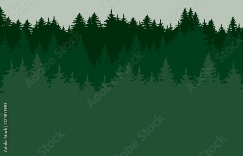 Green forrest silhouette Canvas Print