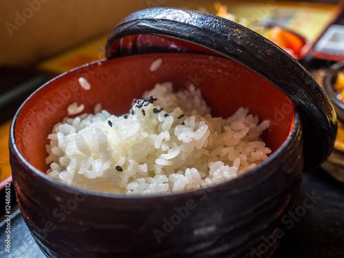 Japanese white rice Canvas Print
