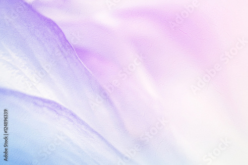 Garden Poster Lotus flower sweet color flower petals in soft color and blur style for background